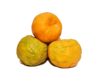 Orange Premium (From Nagpur) /3 Pcs