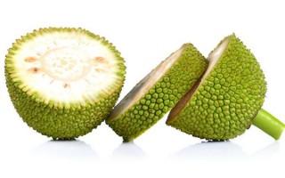 Tender Jackfruit (Kathal) /500g