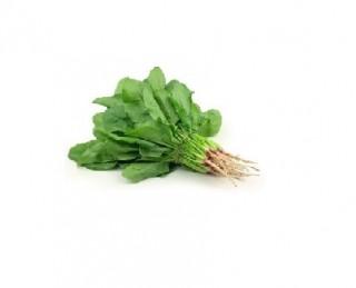 Spinach / पालक